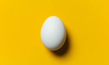 what-eggs-should-really-be-buying