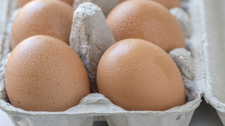 15 mistakes everyone makes when cooking eggs