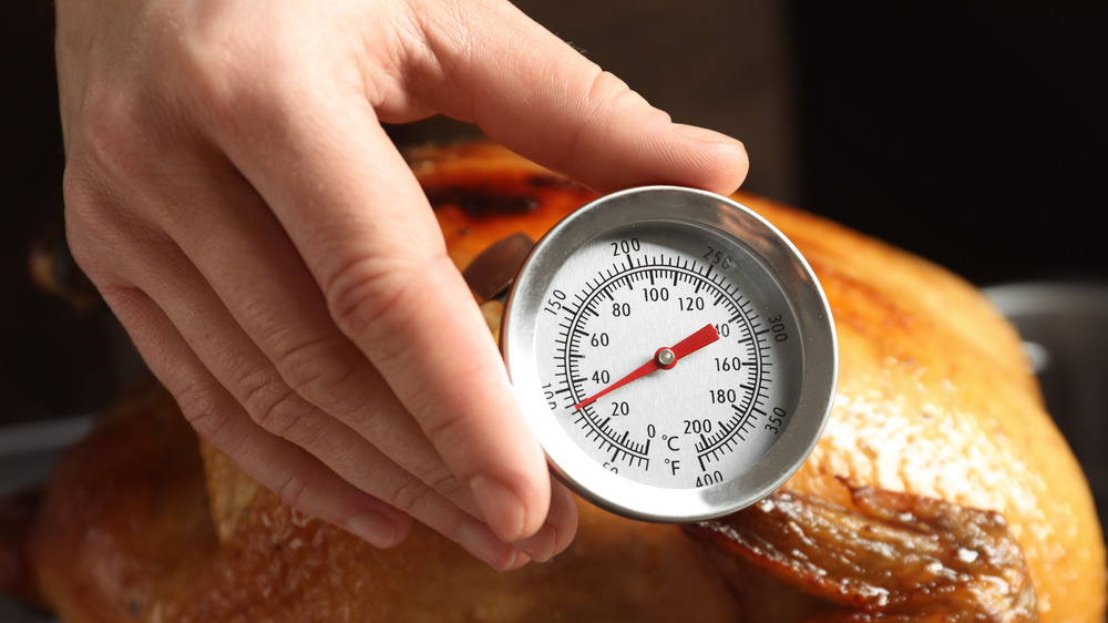 meat thermometer poultry